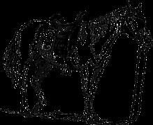 horse-153500__180